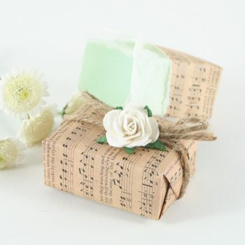 Soap_Parcel_AppleOrchard_01